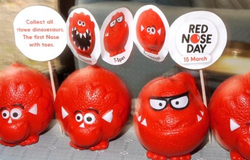 The Red Nose Brigade!