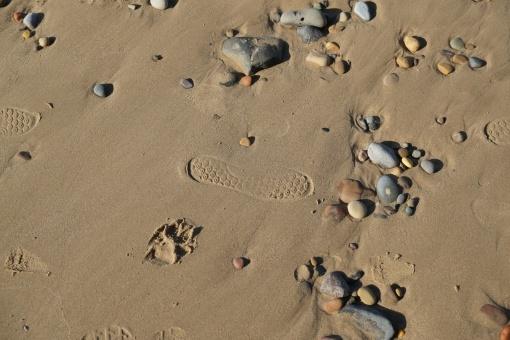 Saltburn sands