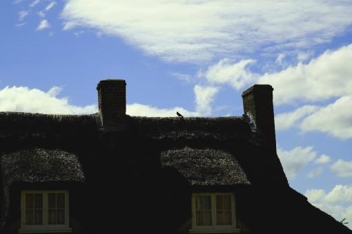 Bird Thatch Two-Chimnies