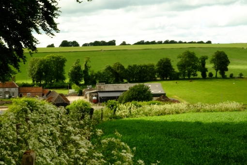 How remote can a farm be in Berkshire?
