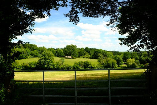 A peek into the valley in Bucklebury