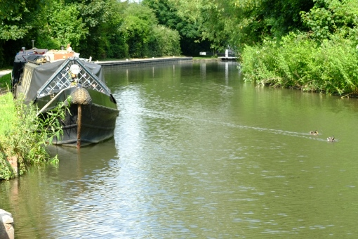 A sultry summers day on the canal...