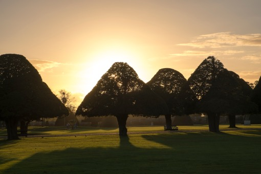 Sunset over Hampton Court Garden