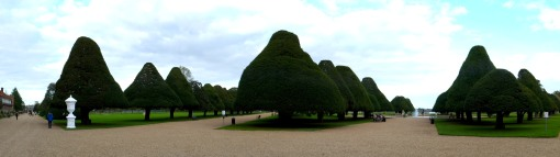 Topiary trees in Hampton Court Gardens, next to the Thames