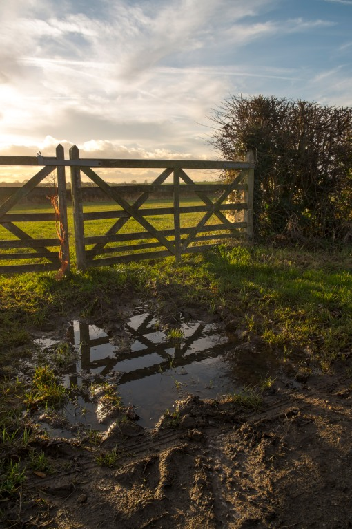 Muddy puddle and grand sky