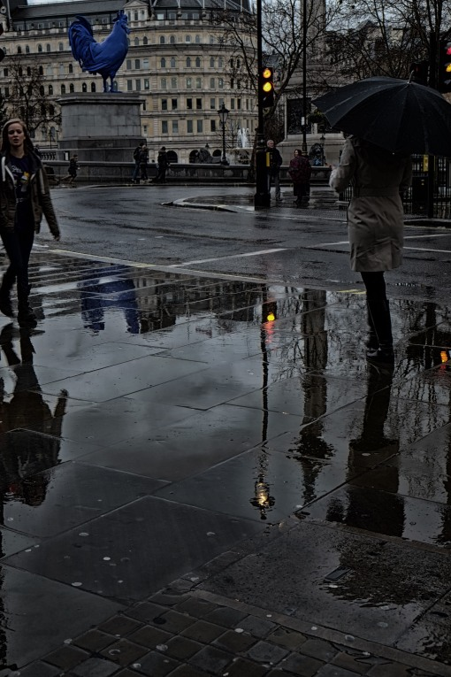 Umbrella and traffic lights