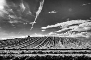 heat in the fields1