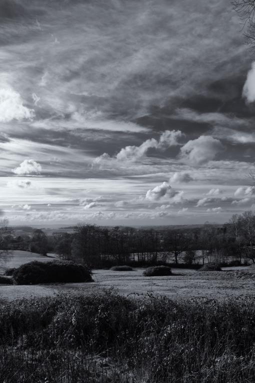 Cold Ash Skies